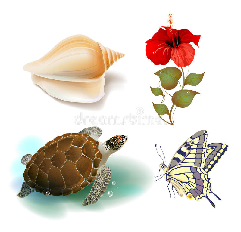 Set of tropical icons. Set of realistic tropical icons royalty free illustration