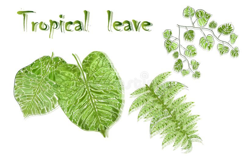 Set of tropical leaves in realism style, isolated on white background. vector green leaves-design elements. Set of realistic tropical leaves isolated on white vector illustration