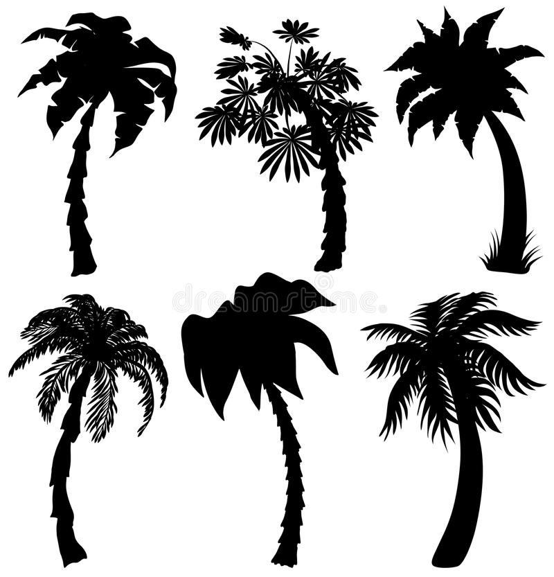 Set of Tropical palm silhouettes stock illustration