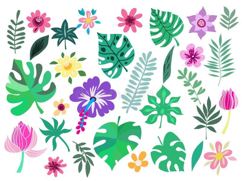Set tropikalni kwiaty ilustracja wektor