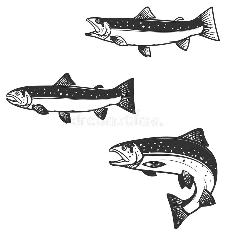 Set of trout silhouettes. Design element for logo, label, emblem, sign, brand mark for fishing camp or team. Vector illustration royalty free illustration