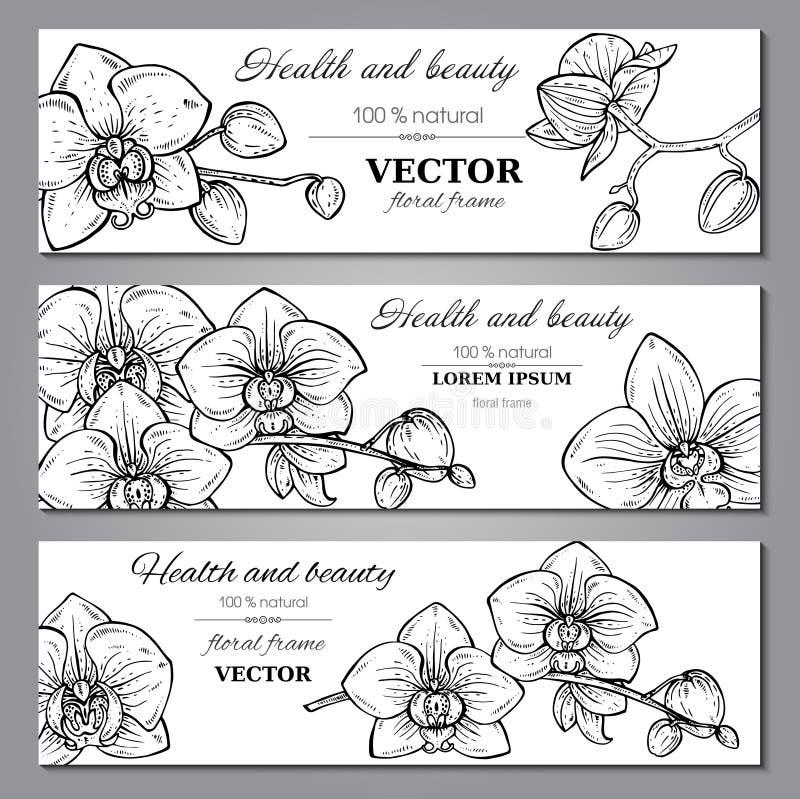 Set trzy horyzontalnego sztandaru z pięknymi storczykowymi kwiatami ilustracja wektor