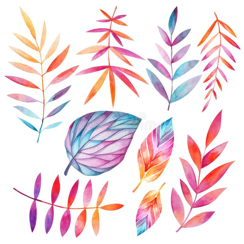 Set of autumn leaves. Watercolor drawing stock illustration