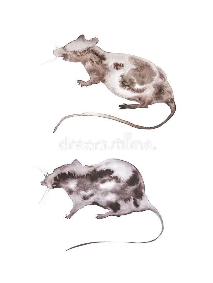 Set of two abstract grey rats.Symbol of 2020 new year. Watercolor illustration isolated on white background royalty free stock photo