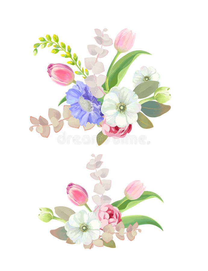 Set of two beautiful floral decorative elements. Attractively arranged bunches of spring or summer flowers, lovely royalty free illustration