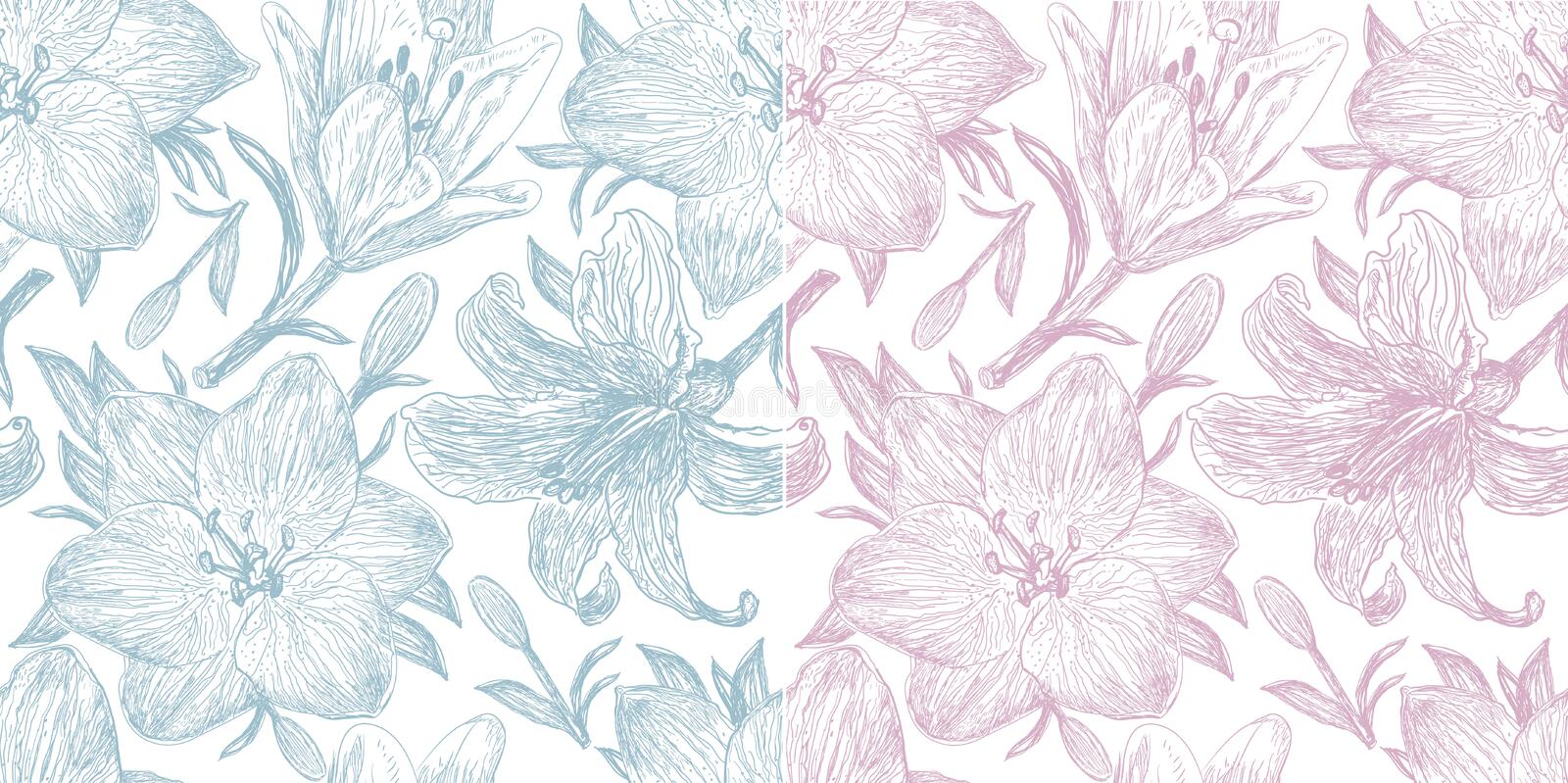 Download Set Of Two Beautiful Pattern With  Lilies Royalty Free Stock Photo - Image: 25508245