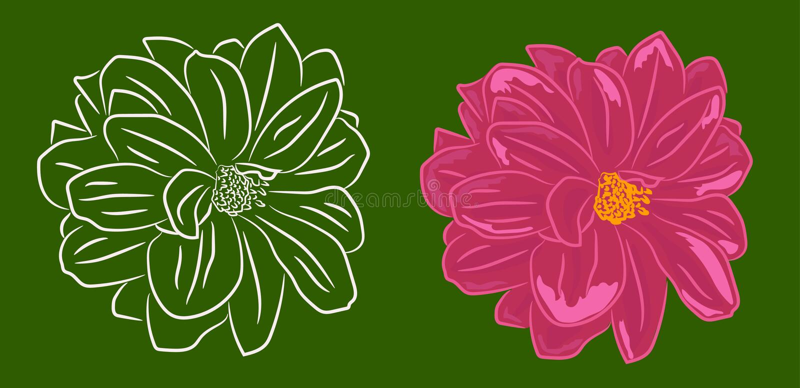 Set of two flowers contoured and with filling stock photo