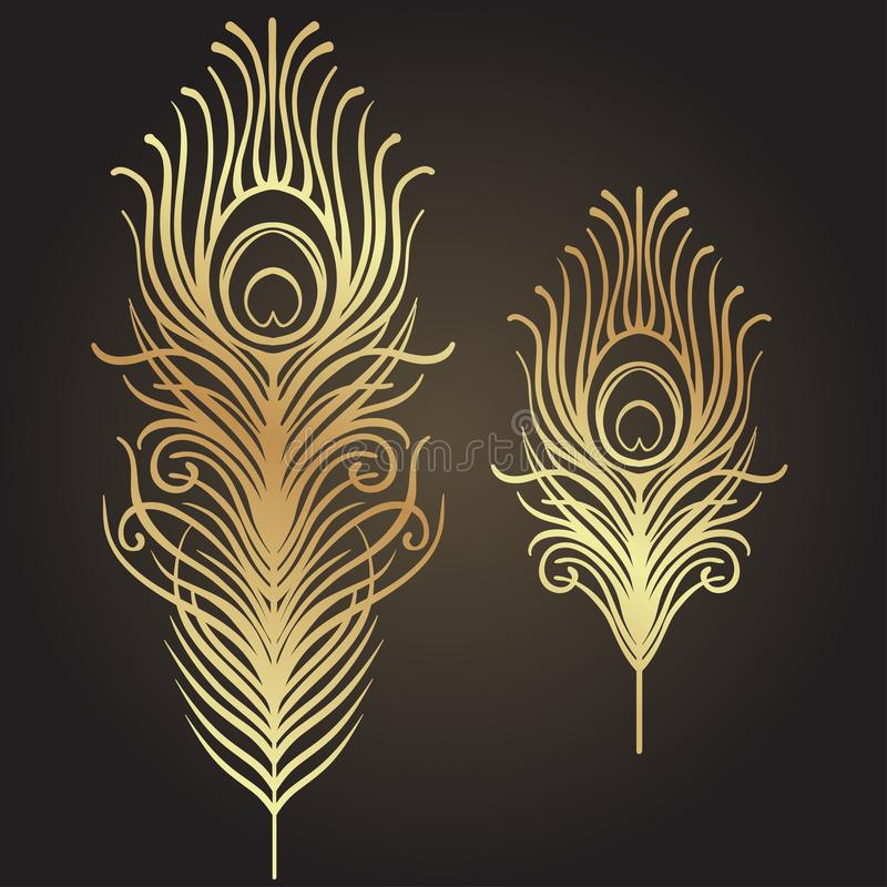 Set of two isolated feathers. Retro hand drawn vector illustrati vector illustration