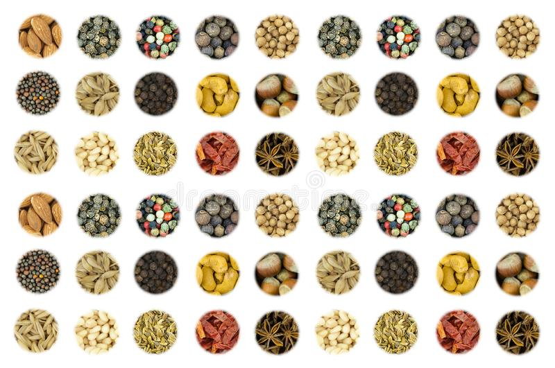 Set of a variety of spices nuts hazelnut almond cashew mix pepper red green white starry anise whole coriander on white background stock photography