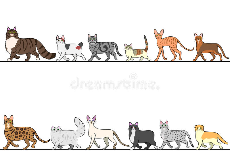 Set of various cats walking in line stock illustration