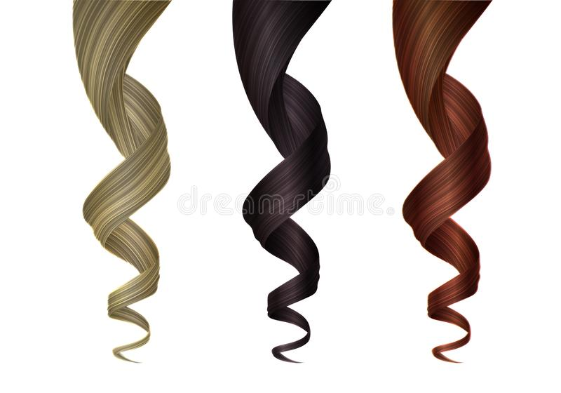 Set of Various Colored Wavy Strands of Hair. Vector Design Element for Hairdressers, Beauty Salons, Hair Care Cosmetics. Set of Various Colored Wavy Strands of stock illustration