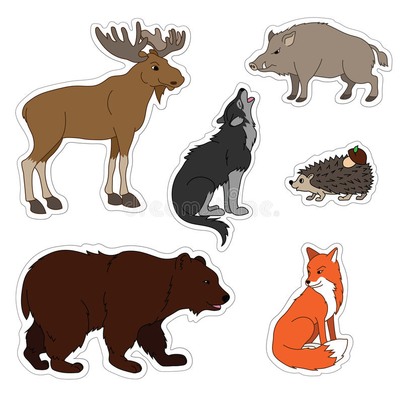 Set of various cute animals, stickers of forest animals. Wolf, fox, bear, wild boar, moose, hedgehog. royalty free illustration