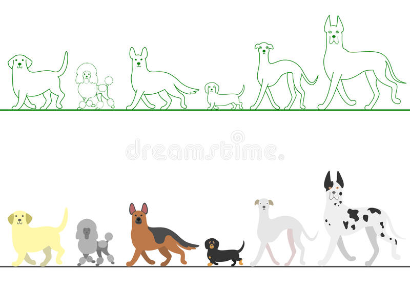 Set of various dogs walking in line stock illustration