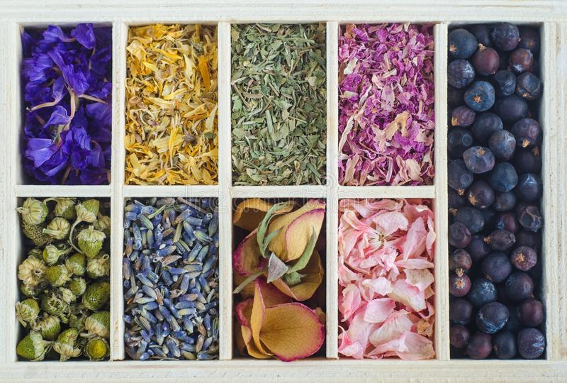 Set of various dry herbs and flowers. Natural background. Set of various dry herbs and flowers. Aromatherapy, ayurveda, herbal medicine concept. Natural royalty free stock image