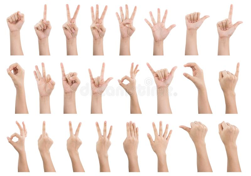 Set of various gestures and sign of Woman`s hand isolated on white. Background royalty free stock photos