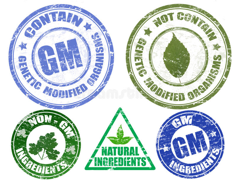 Set of various grunge stamps GM and NON-GM. Set of various grunge stamps about contain and not contain genetic modified organisms vector illustration
