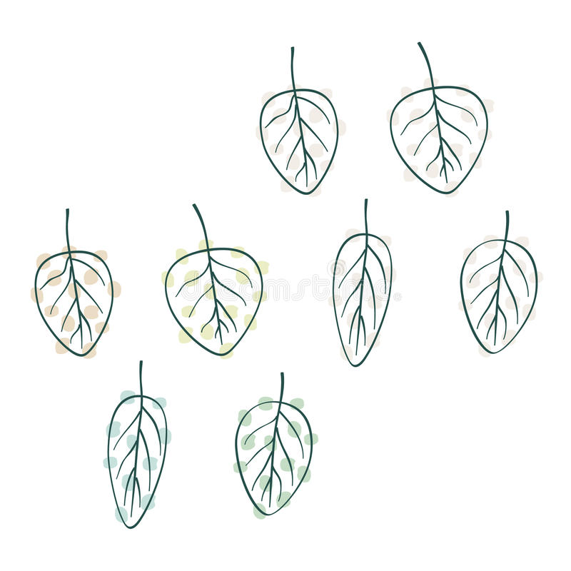 Set of various leaves stock photography