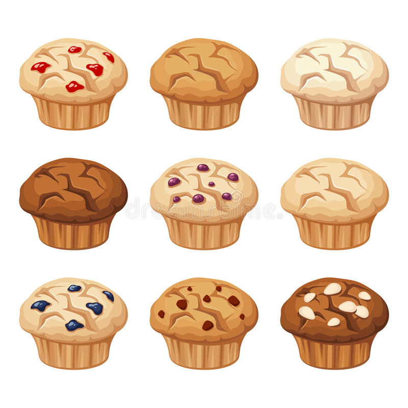 Set of various muffins. Vector illustration. Vector set of various muffins with blueberry, almond, chocolate isolated on a white background vector illustration