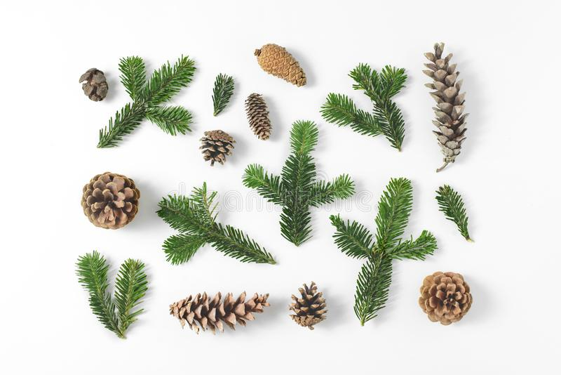 Set of various pine and fir-tree evergreen branches and cones on white background. Natural rustic background. Top view, flat lay. stock photo