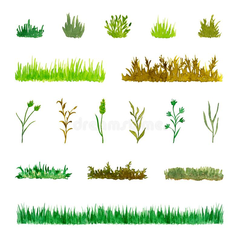 Set of Various Plant Elements Grass, Bushes, Stems, Watercolor Hand Drawn and Painted vector illustration