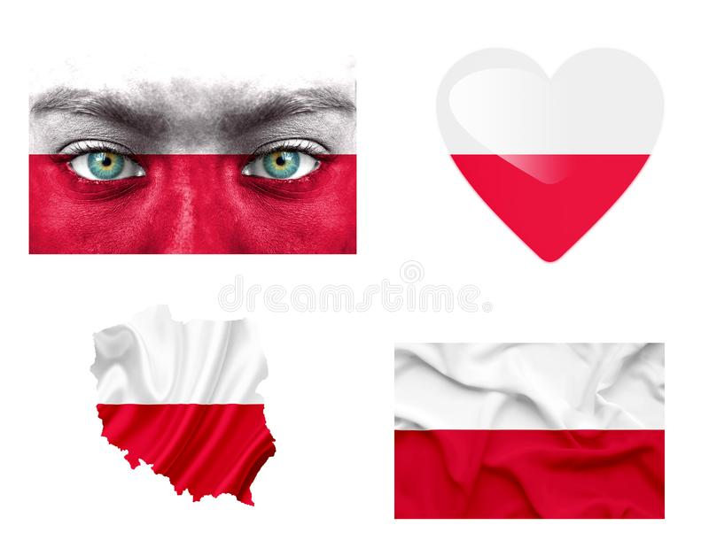 Set of various Poland flags vector illustration