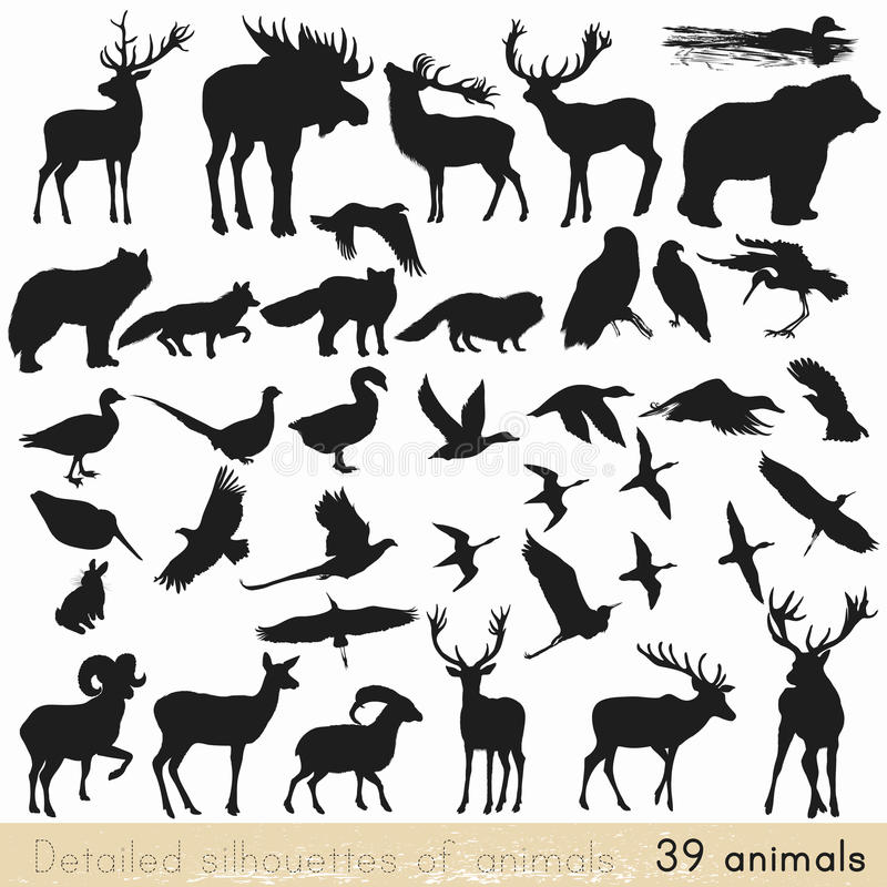 image regarding Free Printable Forest Animal Silhouettes titled Vector Animal Silhouettes Inventory Examples 11,315