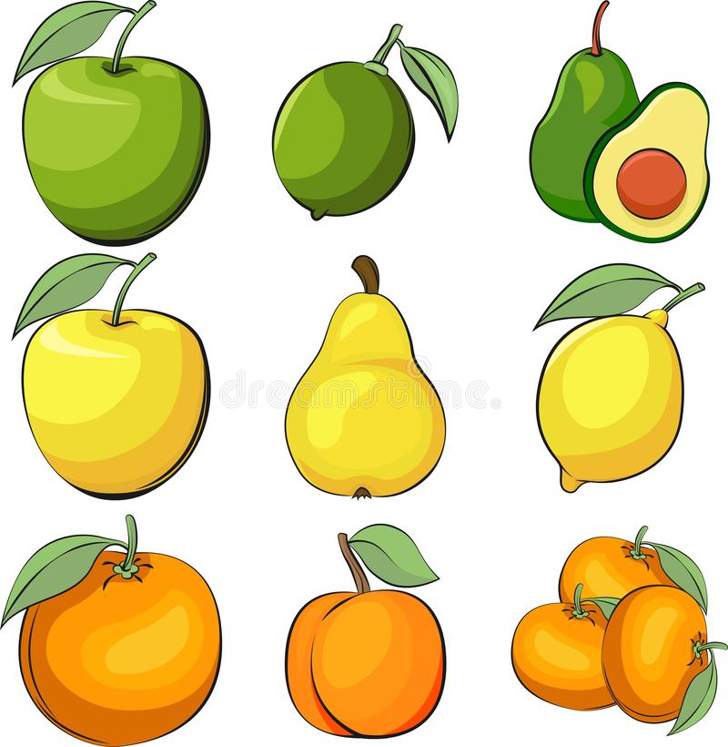 Set of vector apple, lime and avocado. Vector lemon and pear. Apricot and orange vector illustration. Set of vector fruits. Vegeta royalty free stock image
