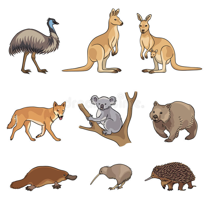 Set of vector Australian animals. Set of stylized vector Australian animals. EPS8 stock illustration
