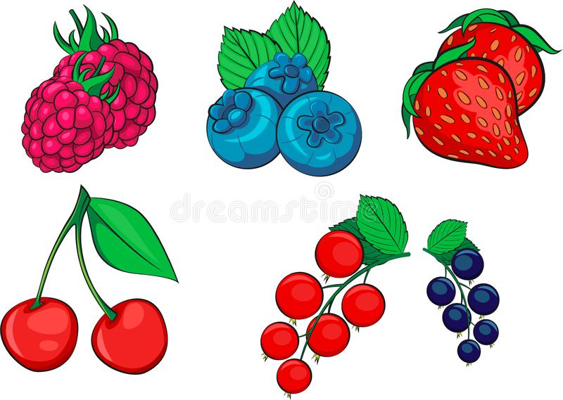 Set of vector berries including vector raspberry, blueberry, fresh strawberry, juicy cherry, gooseberry.  Vector illustration royalty free stock photo