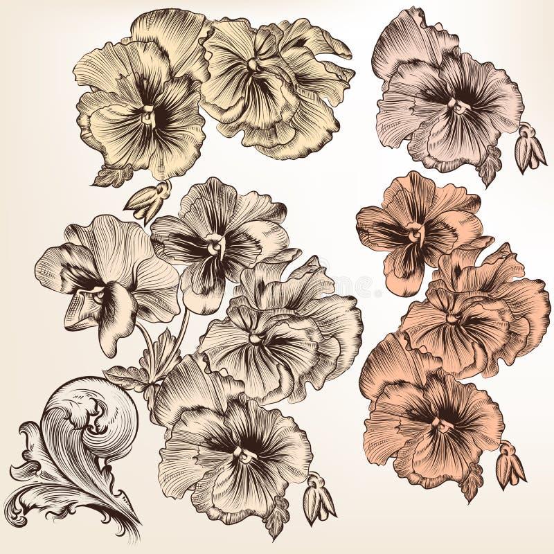 Set of vector detailed flowers for design royalty free illustration