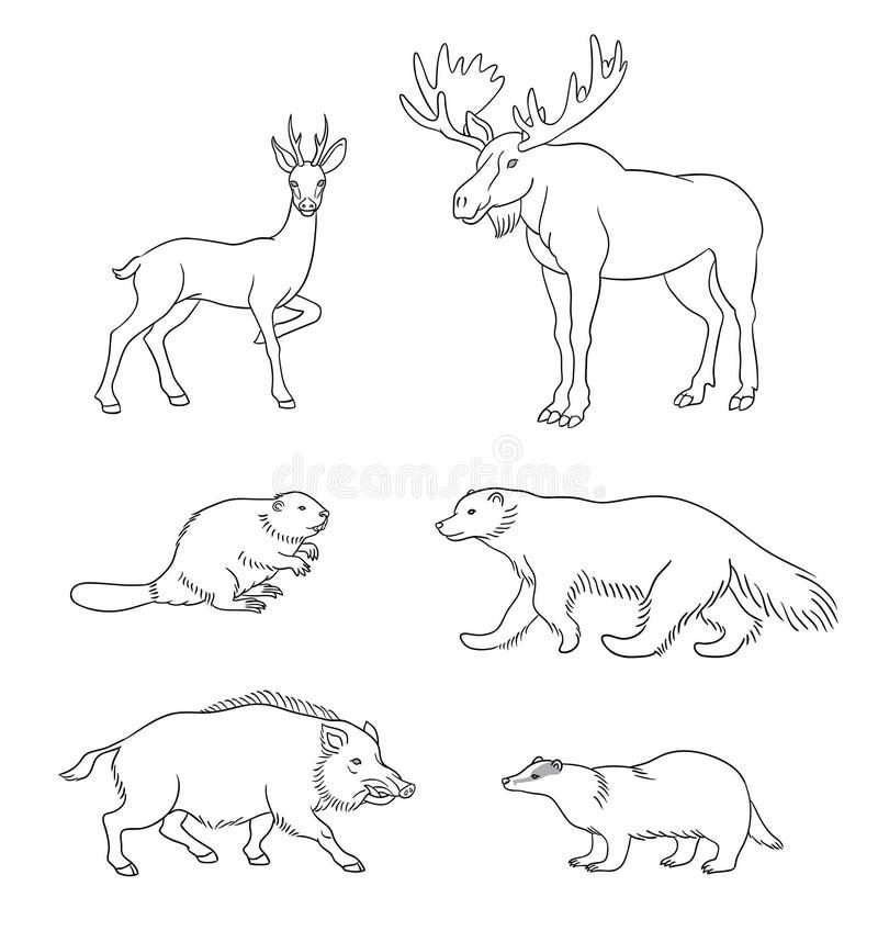 Set of vector forest animals in contours. Set of stylized vector forest animals in contours. EPS8 vector illustration