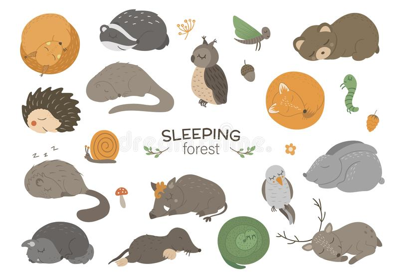 Set of vector hand drawn flat sleeping woodland animals. royalty free illustration