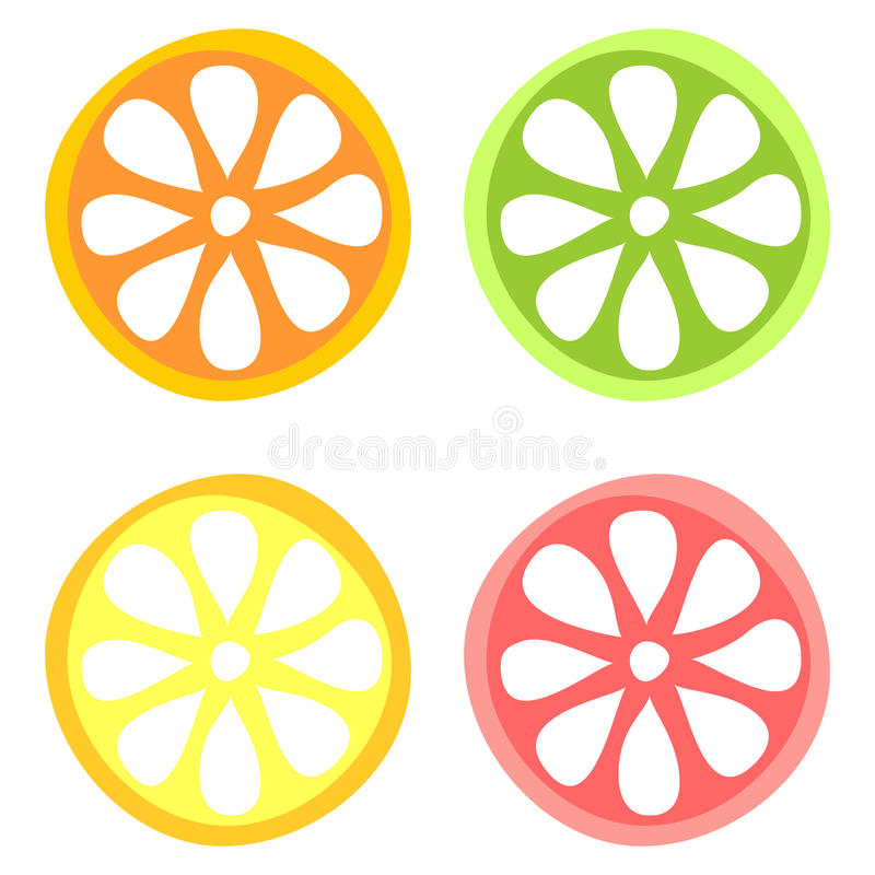 Set of vector illustration of citrus fruits. Lime, orange, lemon and grapefruit, isolated on the white background. Series of Fruits and Vegetables vector illustration