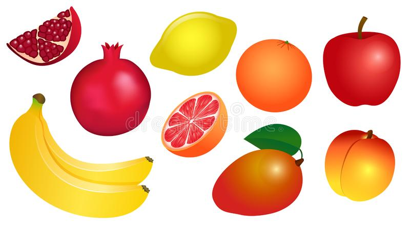 Set of vector illustrations of yellow-red fruits royalty free stock photos