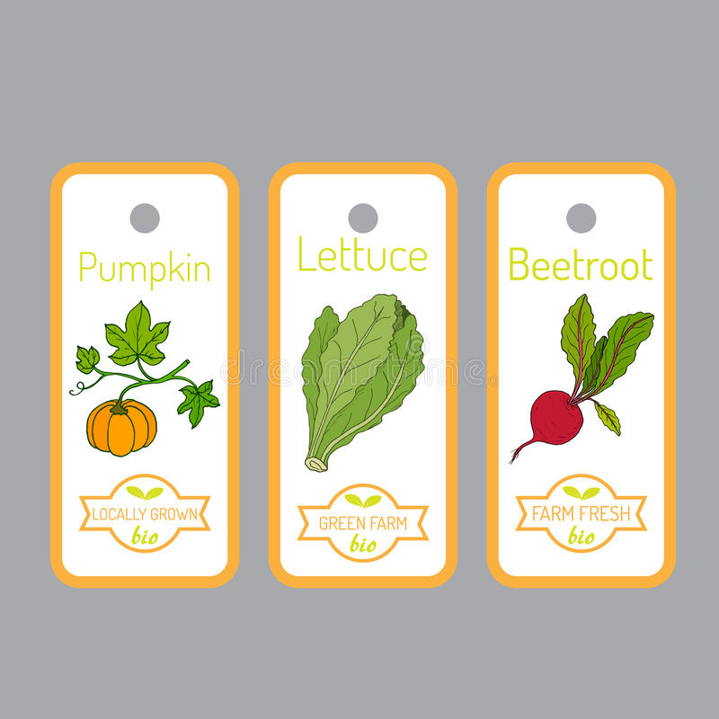 Set of vector labels with hand drawn vegetables royalty free illustration