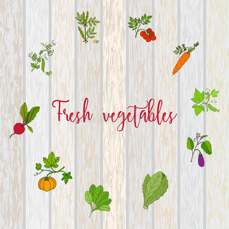 Set of vector labels with hand drawn vegetables vector illustration