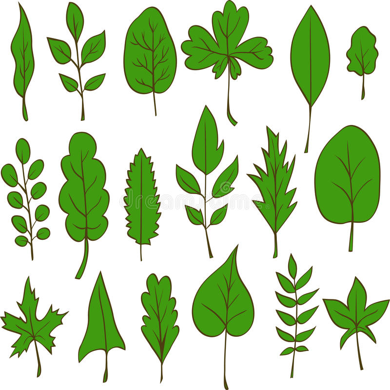 Set Of Vector Leaves Stock Photos