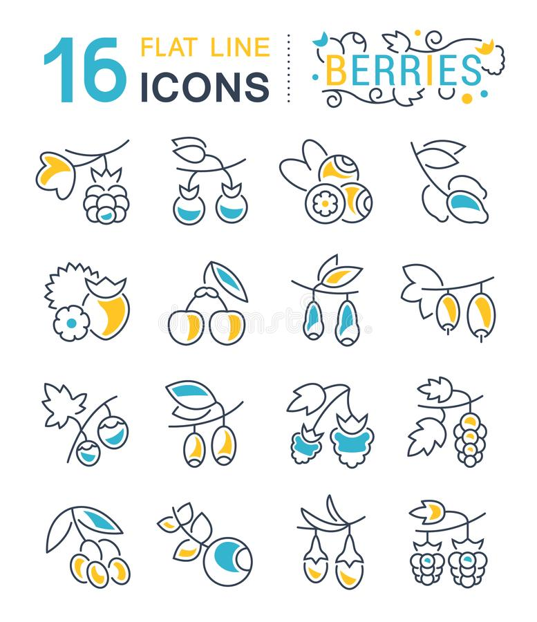 Set Vector Line Icons of Berries. vector illustration