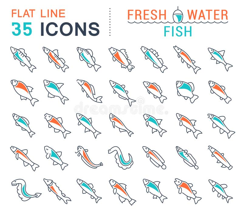 Set Vector Line Icons of Freshwater Fish. Set of vector line icons, sign and symbols with flat elements of freshwater fish for modern concepts, web and apps royalty free illustration