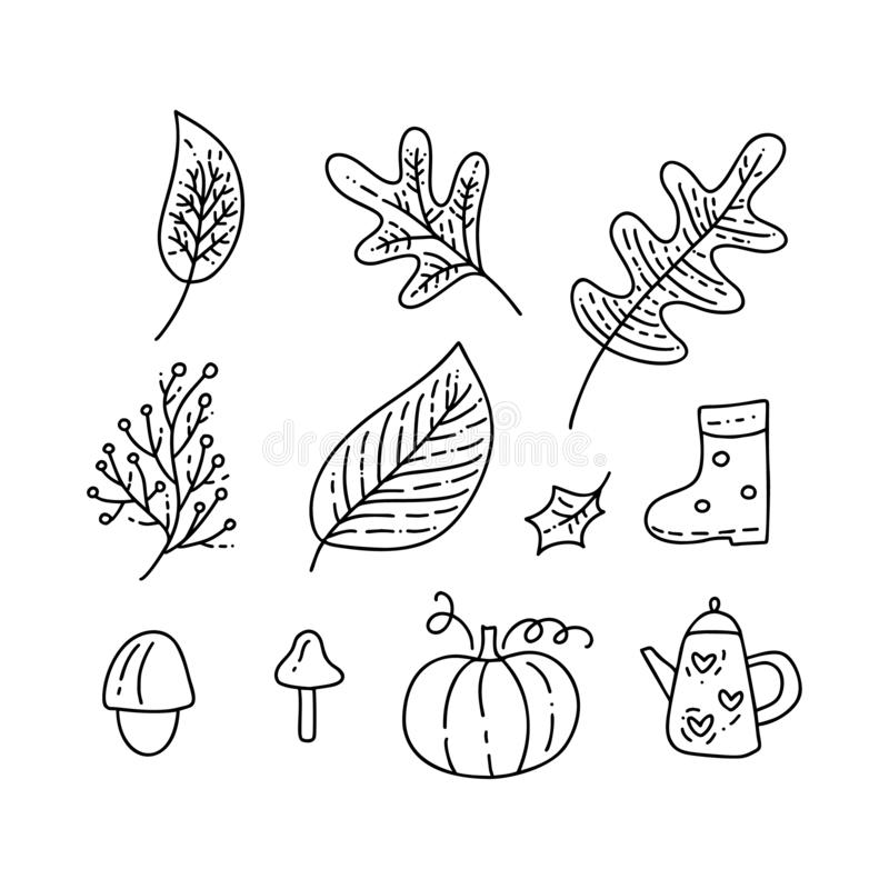 Set of vector monoline doodle floral elements. Autumn collection graphic design. Herbs, leaves, boots, cup and pumpkin. Hand drawn royalty free illustration