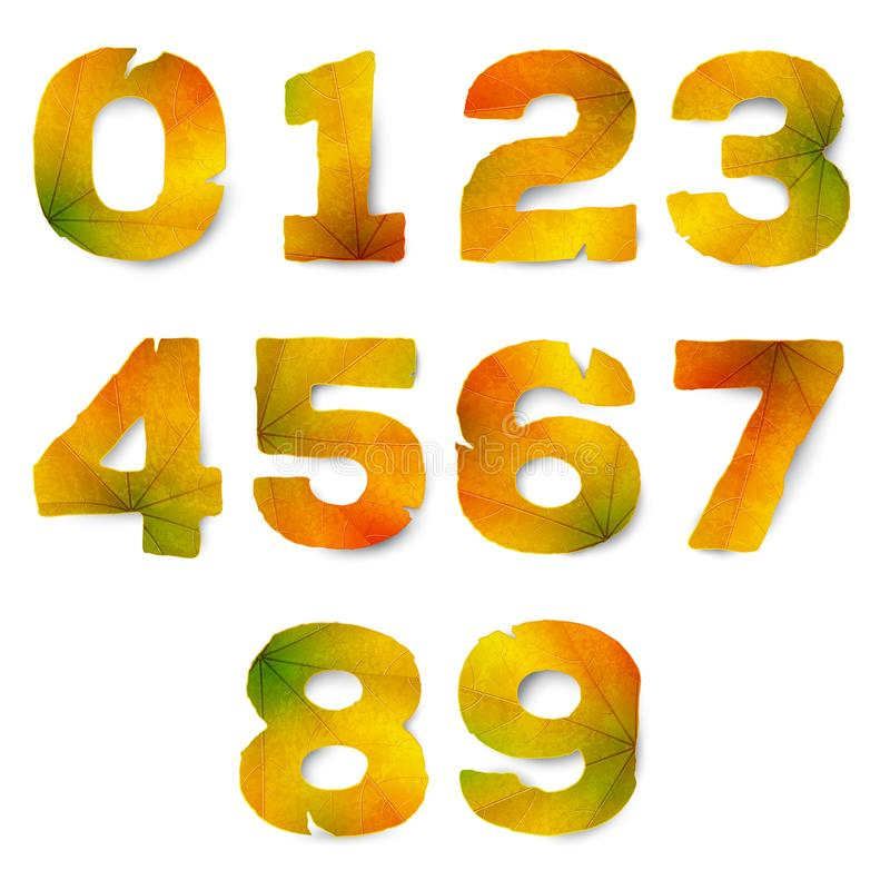Set of vector numbers made from autumn leaves royalty free illustration