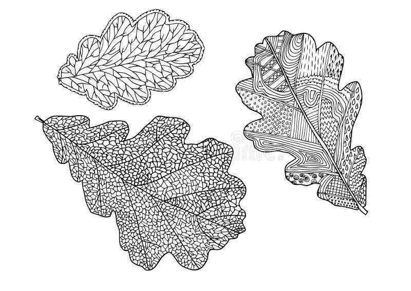 Set of vector oak leaves for your design. Silhouette on White Background. Vector stock illustration