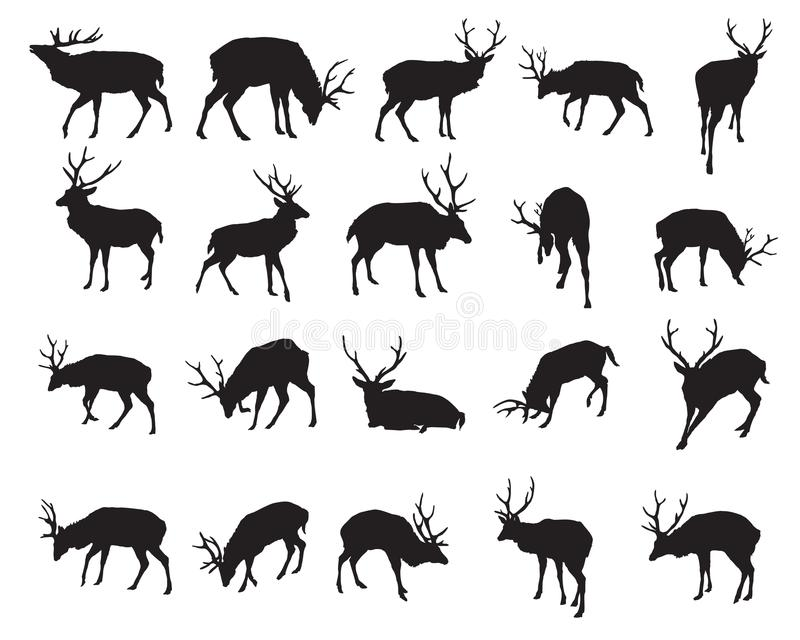 Vector set of deer silhouettes-2. Set of vector standing and lying Red deer silhouettes male isolated on white background stock illustration
