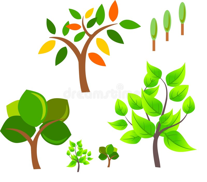 Download Set of vector trees stock vector. Illustration of growth - 7883689