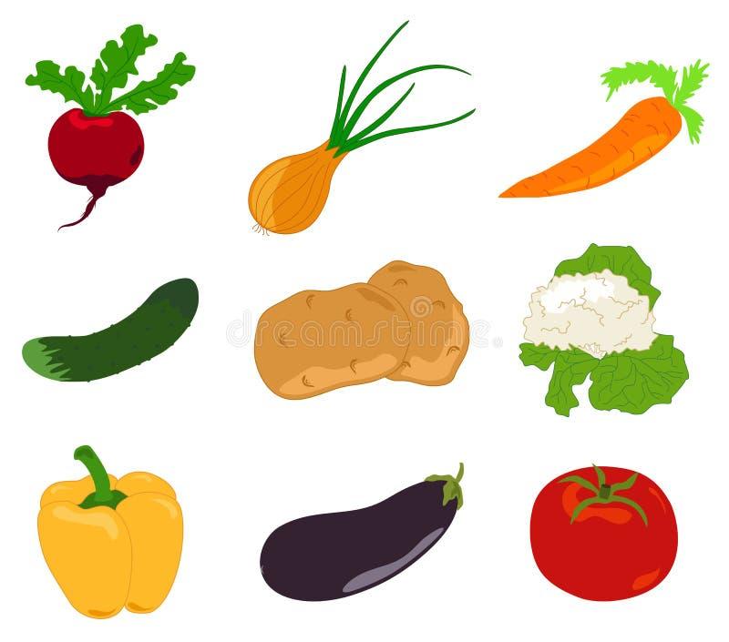 Set vegetable, icon royalty free illustration