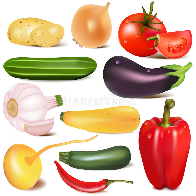 Set vegetable with joint by turnip eggplant stock images