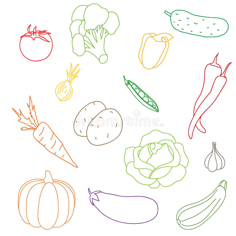 A set of the vegetables isolated on a white background. stock photo