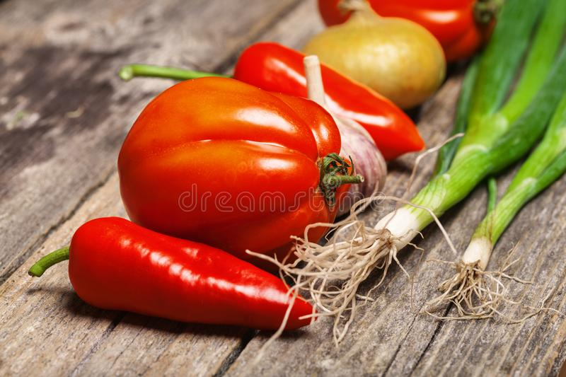Vegetables on the table. Set of vegetables on the vintage wooden table stock images
