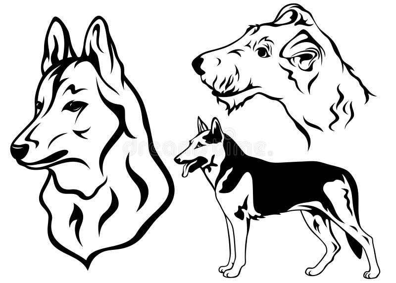 set vektor för hund stock illustrationer