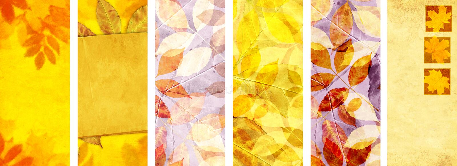 Set of vertical or horizontal autumn banners. Collection of seasonal background with old paper texture and autumn leaves. Mock up template. Copy space for text royalty free stock photo